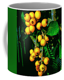 Ripe Loquats Coffee Mug