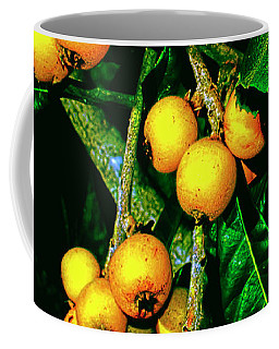 Ripe Loquats Coffee Mug