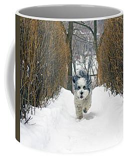 Ripley's Run Coffee Mug by Keith Armstrong