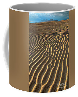 Ripples In Late Sunlight Coffee Mug by Spencer Baugh