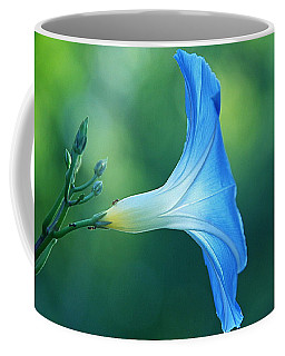Coffee Mug featuring the photograph Rise And Shine by Byron Varvarigos