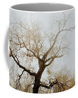 Coffee Mug featuring the photograph Rising by Iris Greenwell