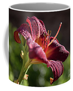 Rising To The Sun Coffee Mug by Sherry Hallemeier