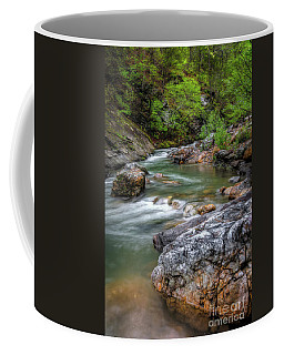 River Beauty Coffee Mug