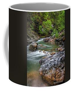 River Beauty Coffee Mug