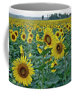 River Bottom Sunflowers Coffee Mug