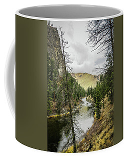 River In The Canyon Coffee Mug