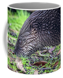 River Otter Astray  Coffee Mug