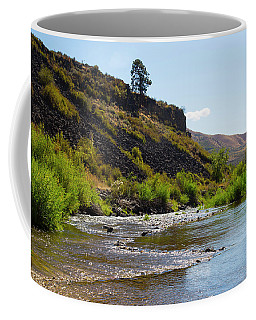 River View Coffee Mug