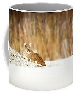 Rivers Treasure  Coffee Mug