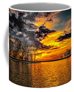 Coffee Mug featuring the photograph Riverview Beach Park Sunset by Nick Zelinsky