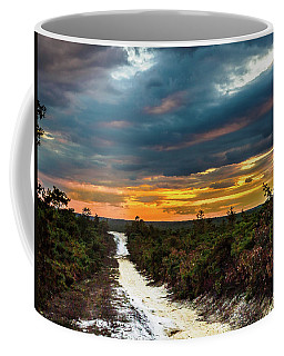 Road Into The Pinelands Coffee Mug