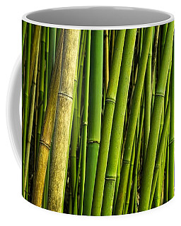 Road To Hana Bamboo Panorama - Maui Hawaii Coffee Mug
