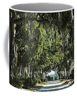 Road With Live Oaks Coffee Mug