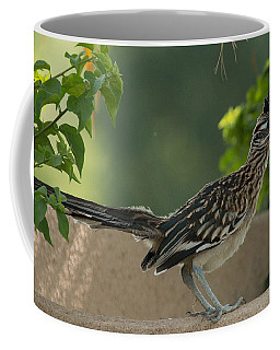 Roadrunner Closeup Coffee Mug