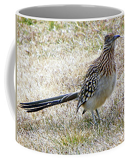 Coffee Mug featuring the photograph Roadrunner New Mexico by Joseph Frank Baraba