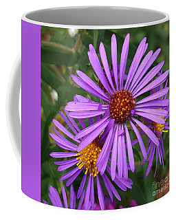 Roadside Flowers Coffee Mug