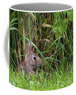 Roadside Rabbit Coffee Mug
