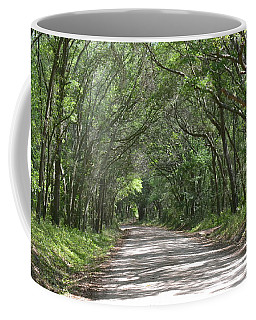 Coffee Mug featuring the photograph Roadway To Mitchellville Beach by Carol  Bradley