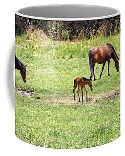 Roaming Freely Coffee Mug