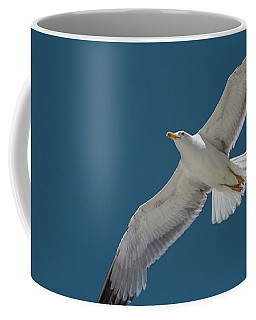 Roaming The Sky Coffee Mug