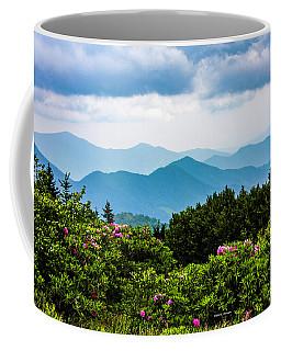 Roan Mountain Rhodos Coffee Mug by Dale R Carlson