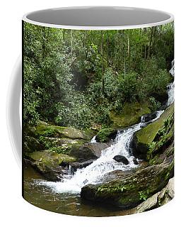 Roaring Fork Falls June 2017 Coffee Mug