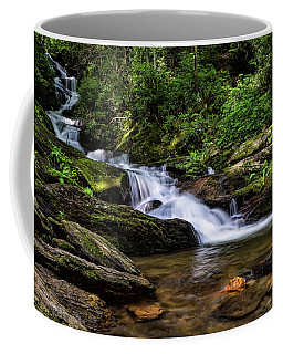 Roaring Fork Waterfall Coffee Mug