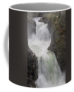 Coffee Mug featuring the photograph Roaring River by Randy Hall