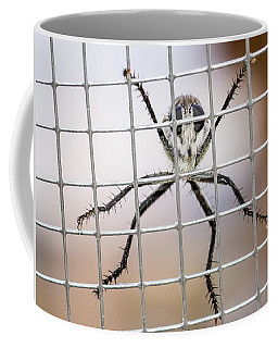 Coffee Mug featuring the photograph Robber Fly Looking For Food by John Brink