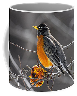 Coffee Mug featuring the photograph Robin Catching Rays by Marty Saccone