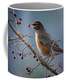 Robin Eating Berries Coffee Mug by Inge Riis McDonald