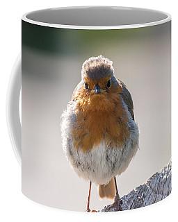 Robin Front Coffee Mug