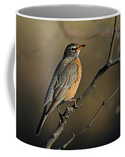 Robin In Early Morning Light Coffee Mug