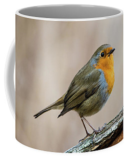 Robin In Spring Coffee Mug by Torbjorn Swenelius