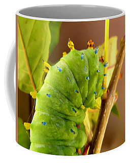 Coffee Mug featuring the photograph Robin Moth Caterpillar by Claire Bull