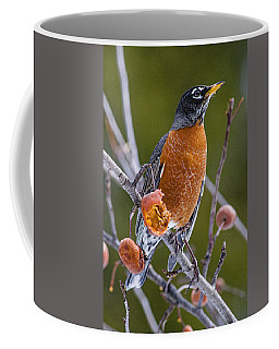 Coffee Mug featuring the photograph Robin Red Breast 2 by Marty Saccone