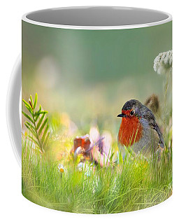 Robin Red Breast Coffee Mug