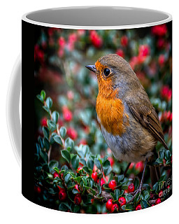 Robin Redbreast Coffee Mug