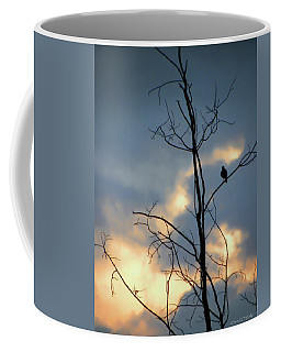 Coffee Mug featuring the photograph Robin Watching Sunset After The Storm by Sandi OReilly
