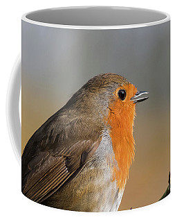 Robin Coffee Mug