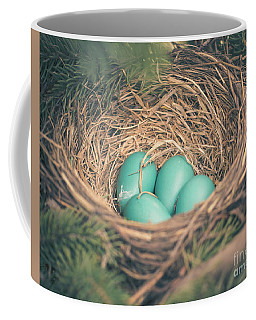 Robin's Eggs In A Nest Coffee Mug