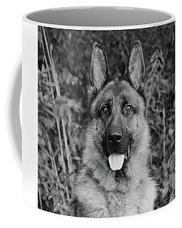 Coffee Mug featuring the photograph Rocco - Bw by Sandy Keeton