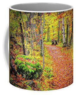 Rock And Bench Coffee Mug