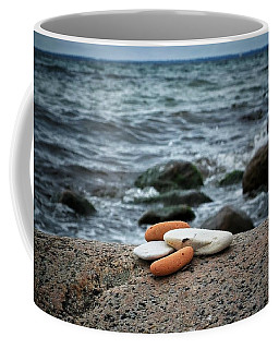 Rock Collection Coffee Mug by Karen Stahlros