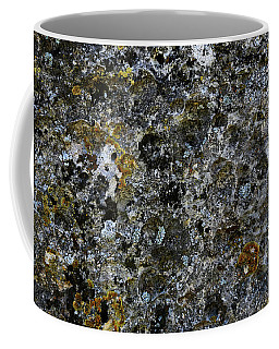 Rock Lichen Surface Coffee Mug
