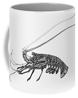 Coffee Mug featuring the drawing Rock Lobster by Judith Kunzle
