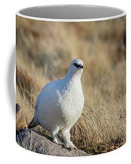 Rock Ptarmigan Coffee Mug