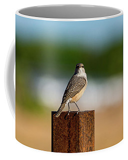 Rock Wren 1 Coffee Mug