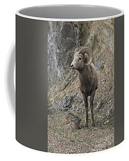 Rockies Big Horn Coffee Mug